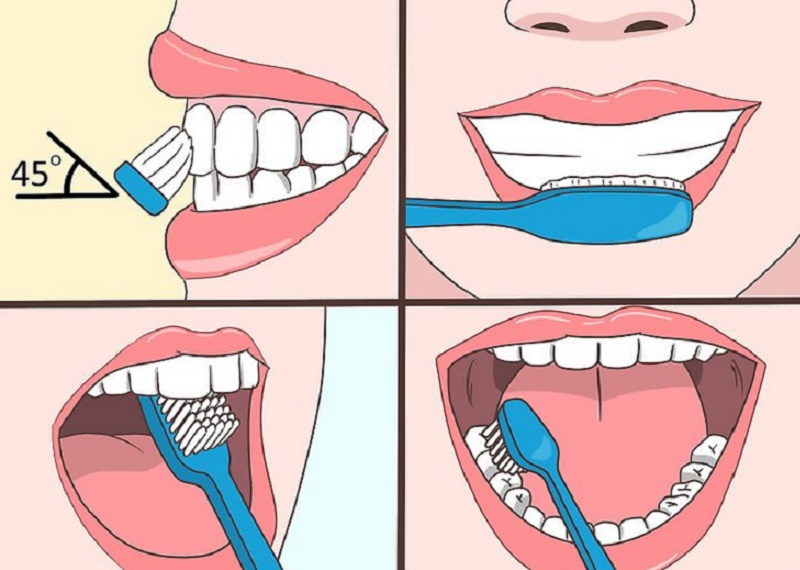 How to brush your teeth properly step by step