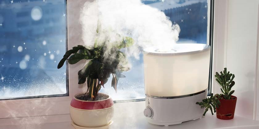 How to humidify the house to fight winter and seasonal illnesses