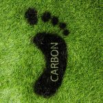 14 ways to reduce your carbon footprint