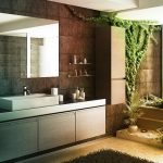 Feng Shui Bathroom Plants