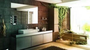 Feng Shui Bathroom Plants