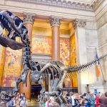 best museums in New York