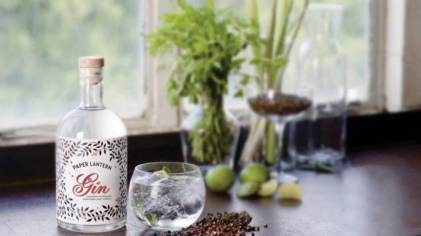 Important Things You Did Not Know About Gin