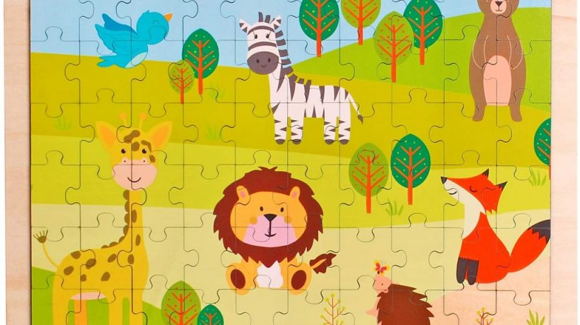 6 Reasons You Should Buy Wooden Puzzles for Kids
